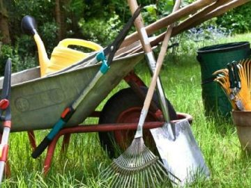 Basic Gardening Tools and Equipment You Need