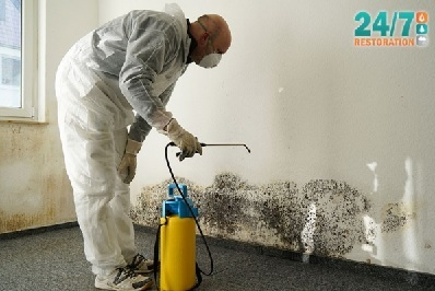 How To Protect Your Home (And Your Family) From The Dangers Of Mold!