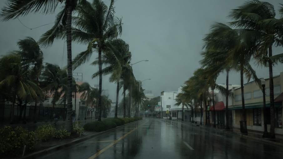 How To Help Your Home Survive Natural Disasters
